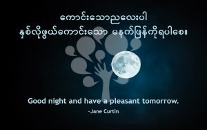 Good night and have a pleasant tomorrow.