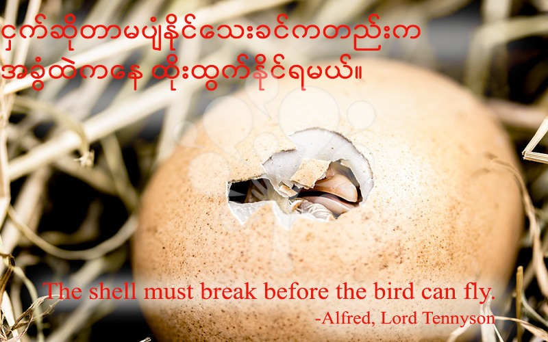 The shell must break before the bird can fly.